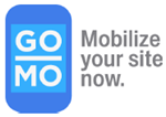 Google Mobilize your site