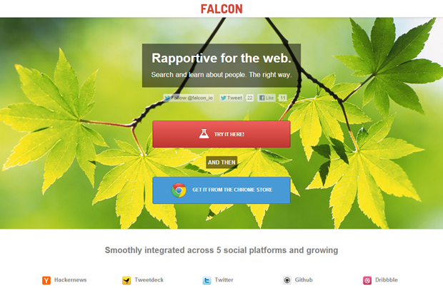 Falcon.io | Homepage