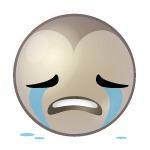 RM_emoticon_huilen